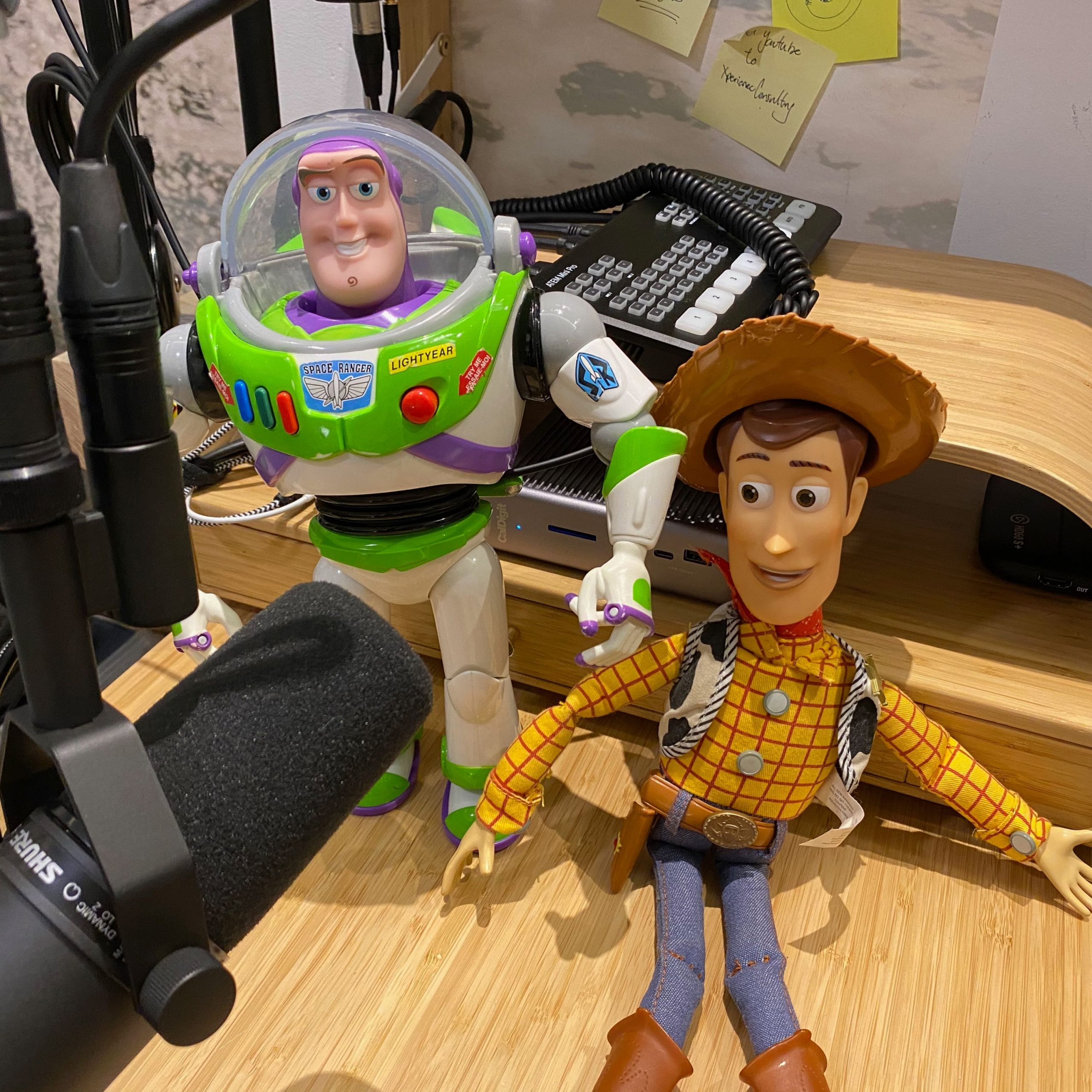 #397 Cleaning Buzz and Woody